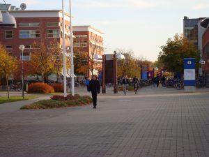 リンシェーピン大学