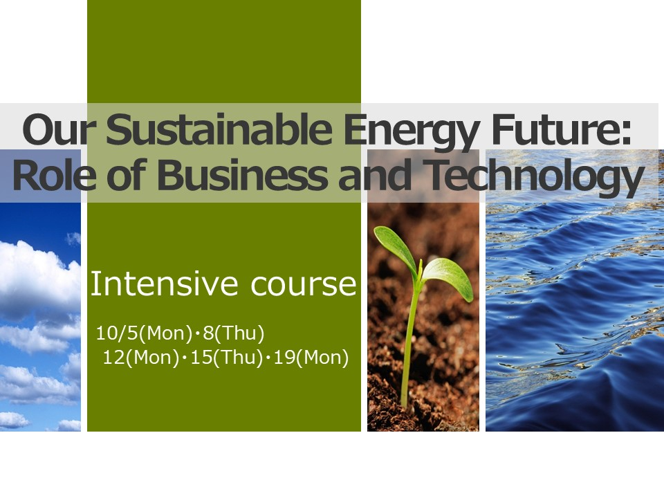Our Sustainable Energy Future: Role of Business and Technology